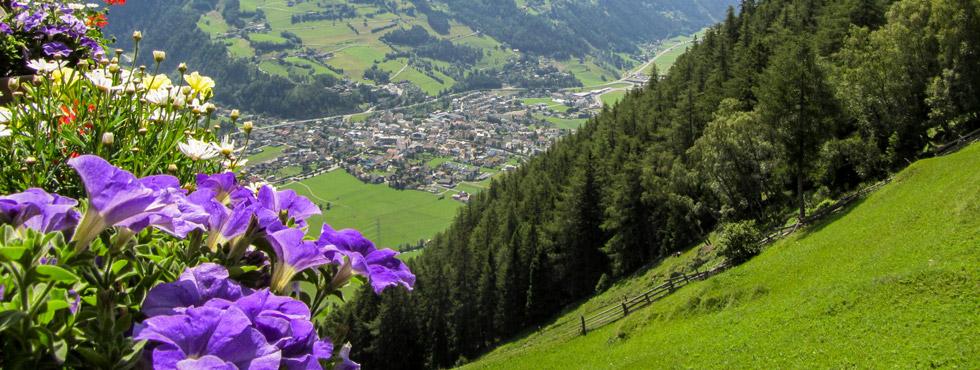 Scheibner Reisen Österreich